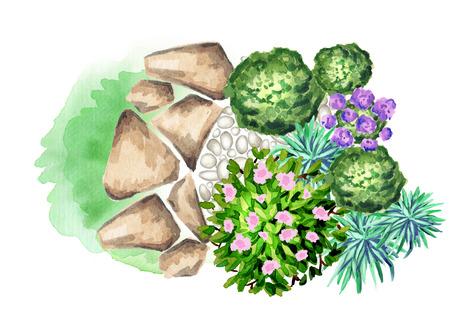 Tuin bloemen. Element van landschapsontwerp. Waterverf Stockfoto