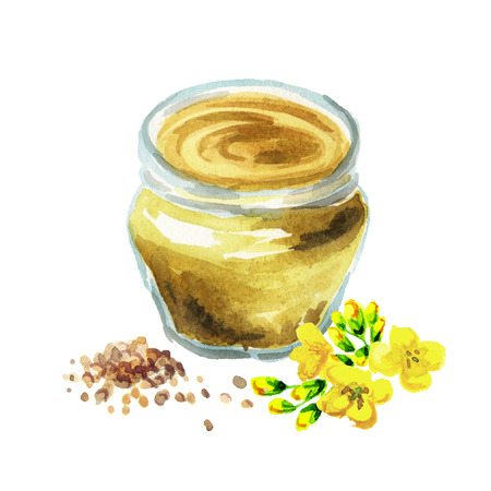 Mustard seasoning. Hand drawn watercolor