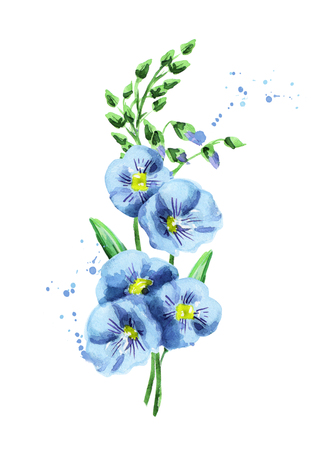Flax flower. Watercolor