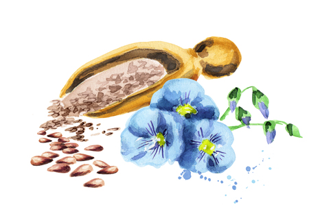 Flax seeds. Watercolor