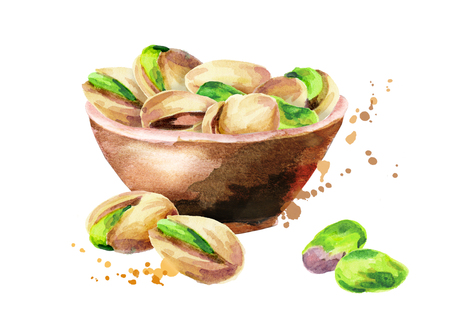 Bowl of nuts pistachios. Watercolor