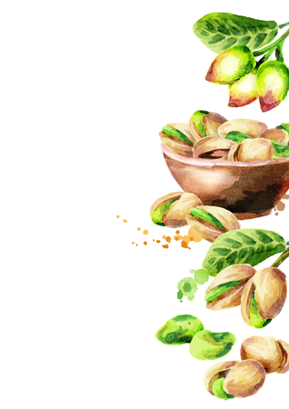 Pistachios template. Watercolor background