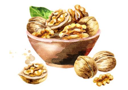 Kom met walnoten. Handgetekende aquarel illustratie Stockfoto