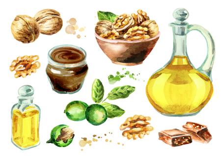 Walnut products set. Watercolor hand-drawn illustration Stok Fotoğraf - 80150794