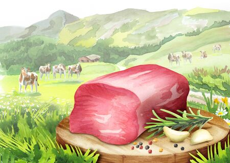 Raw beef fillet with rosemary, garlic and pepper on a plate in a landscape with cows. Watercolor Stock Photo