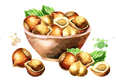 Bowl of hazelnuts. Watercolor illustration Stock Photo