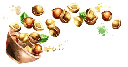filbert nut: Bowl with hazelnuts. Hand-drawn horizontal watercolor illustration