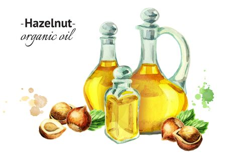 hazelnuts: Hand-drawn watercolor composition with bottles of Hazelnut oil and nuts