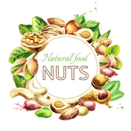 Meng de noten. Natuurlijk biologisch voedsel. Aquarel handgetekende illustratie Stockfoto