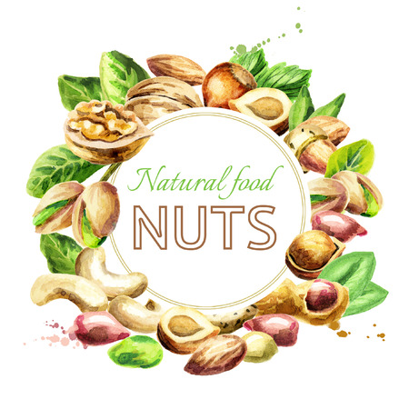 Nuts mix. Natural organic food. Watercolor hand-drawn illustration