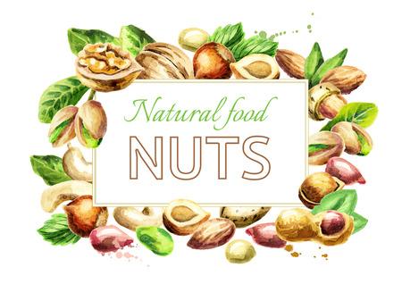 Nüsse mischen Hintergrund. Natürliches Essen. Von Hand gezeichnete Illustration des Aquarells Standard-Bild