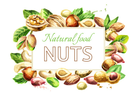 Nuts mix background. Natural food. Watercolor hand-drawn illustration