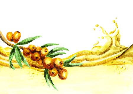 argousier: Vague d'huile d'argousier. Illustration aquarelle dessinés à la main Banque d'images