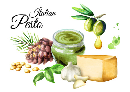 Ingredients for sauce Pesto, popular Italian sauce. Isolated on white background. Watercolor illustration