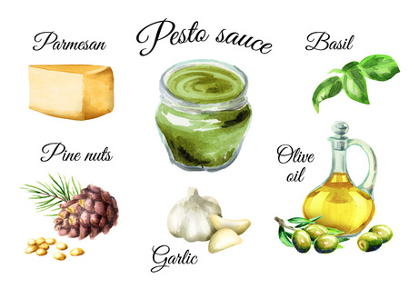 Ingredients for sauce Pesto, popular Italian sauce. Isolated on white background. Watercolor illustration Zdjęcie Seryjne - 83002714