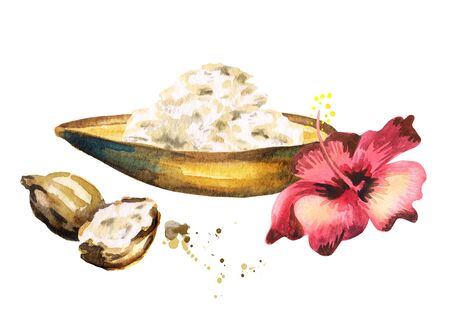 Shea butter and a flower. Hand-drawn watercolor illustration