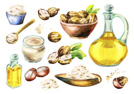 Shea organic oil. Watercolor illustration Stock Photo