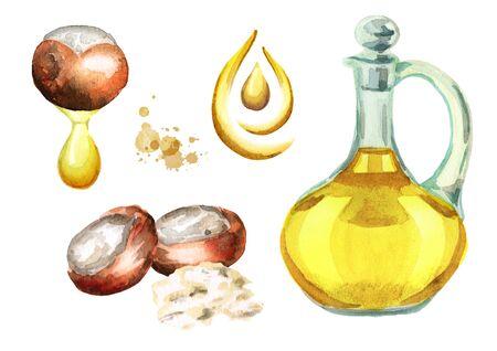 Shea oil set. Watercolor illustration