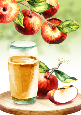 Apple cider. Watercolor hand-drawn illustration