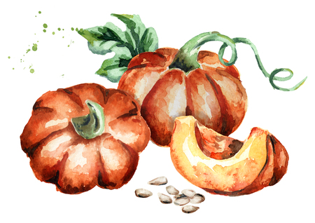 Pumpkins composition. Watercolor hand-drawn illustration