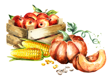 Herfst oogst. Waterverf handgetekende illustratie