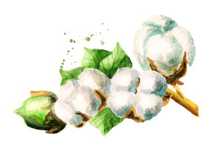 white fabric texture: Cotton. Hand-drawn watercolor illustration