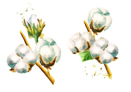 white fabric texture: Cotton illustration. Hand-drawn watercolor