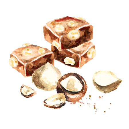 Chocolate with macadamia nuts. Watercolor hand drawing illustration