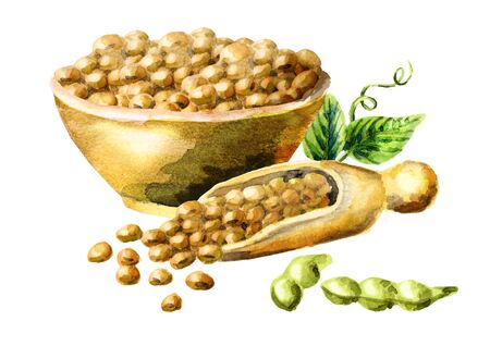 Bowl and scoop with soybeans. Watercolor hand-drawn illustration