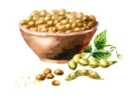 Bowl with soybeans. Watercolor hand-drawn illustration