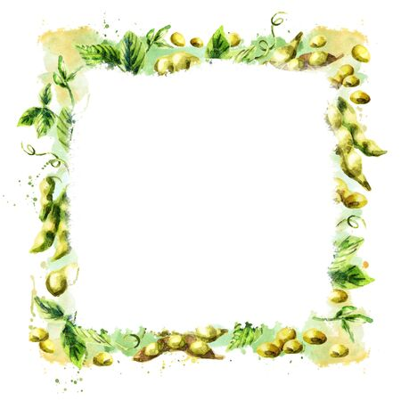 Organic Soybean square background. Watercolor hand drawn template
