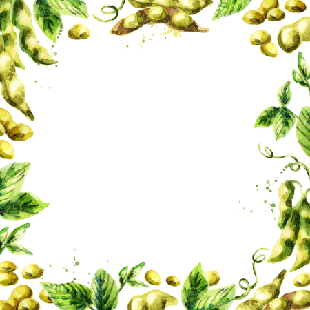 Organic Soybean square template. Watercolor hand drawn background
