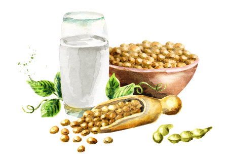 Glass with Soy milk and soybeans composition. Watercolor hand drawn illustration . Stock Photo