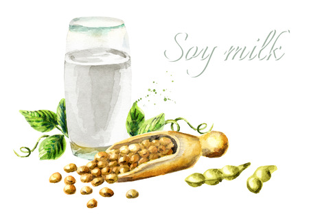 soy bean: Soy milk composition. Watercolor hand drawn illustration.