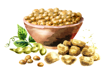 dietary: Soy meat with bowl of soybeans. Watercolor hand drawn illustration.