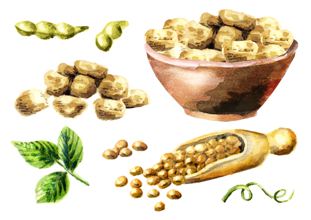 soy bean: Soy meat with soybeans set. Watercolor hand drawn illustration.