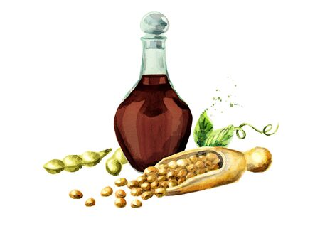 Soy sauce and soybeans composition. Watercolor hand drawn illustration.