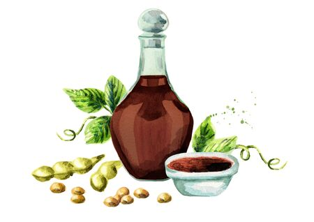 Soy sauce composition. Watercolor hand drawn illustration.