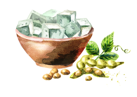 soy bean: Bowl with Soy tofu. Watercolor hand drawn illustration
