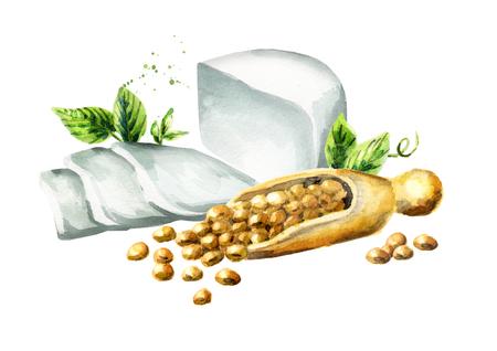 soy bean: Soy tofu. Watercolor hand drawn illustration. Stock Photo
