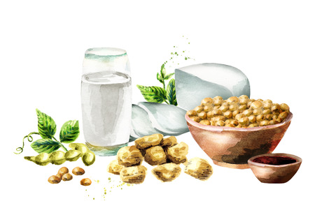 Soy products composition with soybeans, milk, meat, tofu, sauce and green leaves. Watercolor hand drawn illustration.