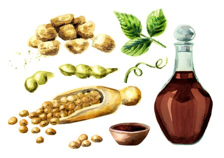 dietary: Soy products set with soybeans, meat, and sauce. Watercolor hand drawn illustration.