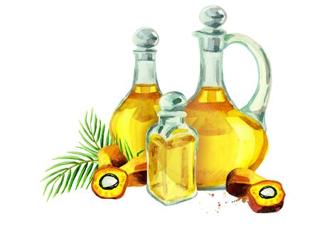 Hand drawn watercolor composition with bottles of palm oil