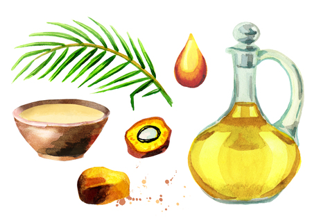 Palm oil set. Watercolor collection Stock Photo