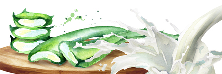 Organic aloe vera and yogurt splash. Watercolor hand drawing illustration