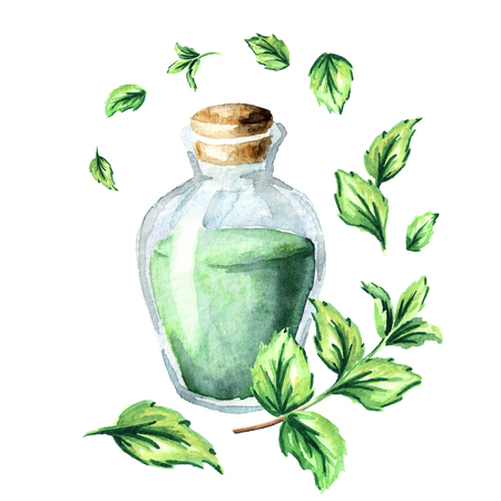 Peppermint essential oil composition. Watercolor hand drawn illustration