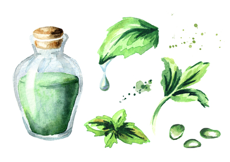Peppermint essential oil set. Watercolor hand drawn illustration
