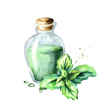 Peppermint essential oil. Watercolor hand drawn illustration