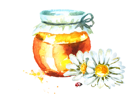 Fresh honey and camomile. Watercolor hand drawn illustration