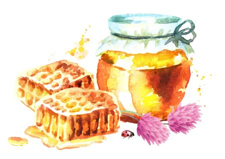 Fresh honey and clover. Watercolor hand drawn illustration Stock Photo